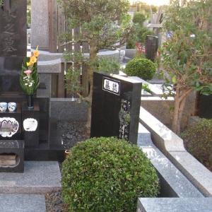 墓誌クリーニング